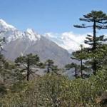 EBC – Khumjung to Debuche (3863m)