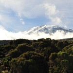 Kili – to Mweka camp (3100m)