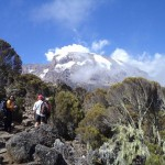 Kili – to Baranco camp (3950m)