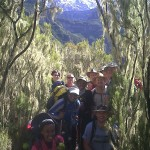 Kilimanjaro – pic of the group
