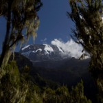 Kilimanjaro – to Baranco camp