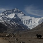 Mt Everest Advanced Base Camp with Sean Wisedale