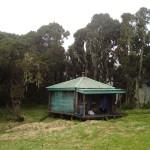 Rwenzoris – John Matte Hut (3505m)