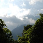 Rwenzoris – Nyabitaba Hut (2651m)